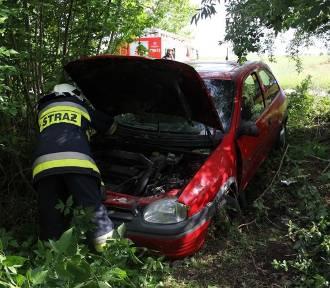 Zieleń: kierowca wypadł z drogi prosto w krzaki [FOTO]