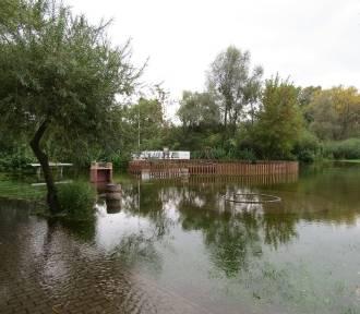 Stan Drwęcy w Brodnicy niepokojąco rośnie! [zdjęcia]