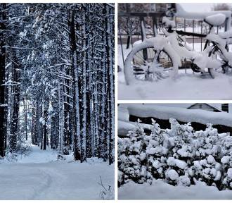 Atak zimy oczami użytkowników Instagrama. Zobaczcie najciekawsze zdjęcia z Podlasia