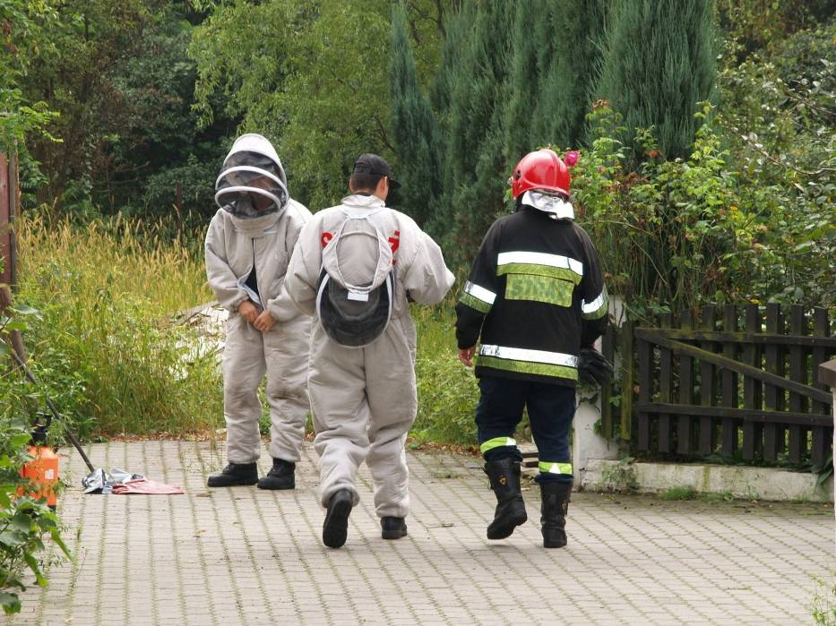 Strażacy podczas przygotowań do akcji