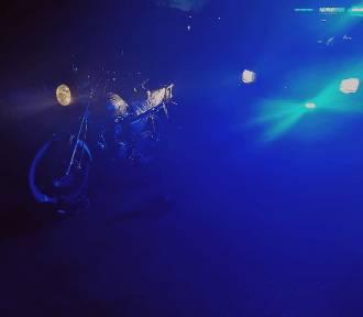 Na widok policjantów... wpadł do rowu. Jechał kompletnie pijany!