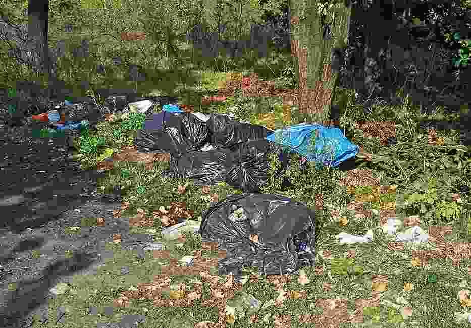"""Czy """"podatek od śmieci"""" spowoduje, że łodzianie przestaną wyrzucać śmieci do lasów czy zostawiać je przy drogach?"""