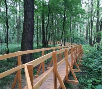 Ścieżka edukacyjna pośród drzew i ścieżka zdrowia. Dwie nowości w Dolinie Trzech Stawów ZDJĘCIA