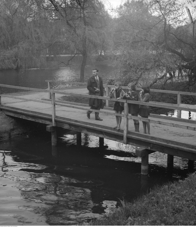 Rzeka Dzierżęcinka w Parku Książąt Pomorskich