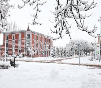 Czy jeszcze zobaczymy prawdziwą zimę w Lublińcu? Miasto i natura w śniegu sprzed lat!
