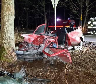 Osobówką w drzewo. Trzy osoby ciężko ranne, kierowca pijany [ZDJĘCIA]