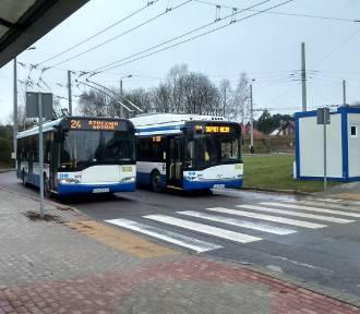 Więcej kursów na zatłoczonych liniach w Gdyni