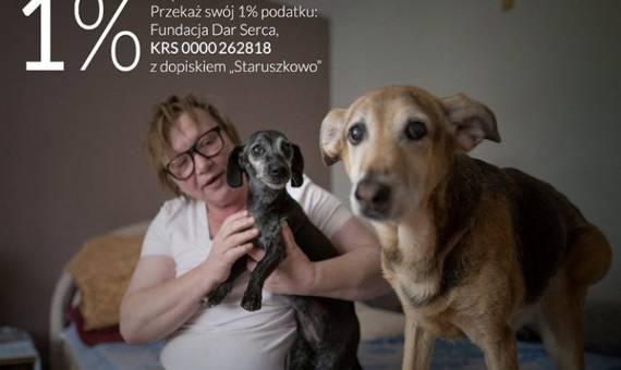 Staruszkowo. Pani Krystyna i jej psie starowinki przeprowadzają  się do nowego domu. Pomóżcie