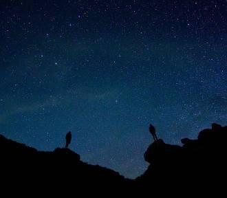Nadchodzi noc spadających gwiazd. Nie przegap ich!