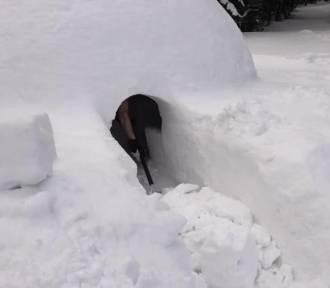 Mieszkaniec Kowar buduje kolejne igloo. Ma pomieścić nawet 10 osób! [FILM/ZDJĘCIA]