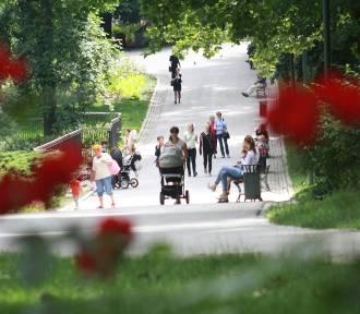 Prognoza pogody dla woj. lubelskiego na czwartek, 22 sierpnia (WIDEO)