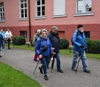 Seniorzy zdobyli najwyższe wzniesienie stolicy powiatu wejherowskiego