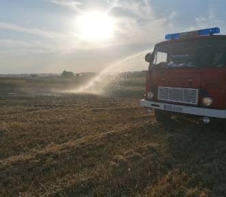 Pracowity weekend strażaków z powiatu sztumskiego - płoną ścierniska i łany zbóż [ZDJĘCIA]