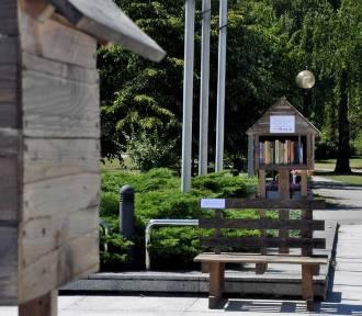 Letnia Czytelnia przed gmachem Biblioteki Śląskiej ZDJĘCIA