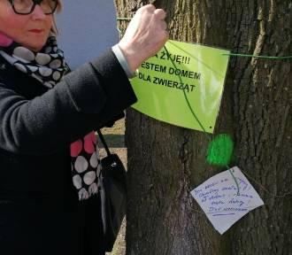 Niezwykły protest w Poznaniu. Wieszali specjalne plakietki