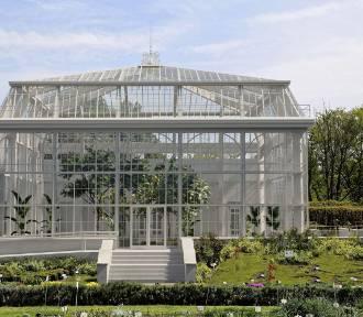 Ogród Botaniczny UJ wzbogaci się o okazałą oranżerię!