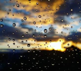 W Dąbrowie Górniczej deszczówka z dotacją. Można zyskać do 5 tys. złotych