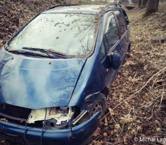 Groźny wypadek. Samochód uderzył w dzika [ZDJĘCIA]