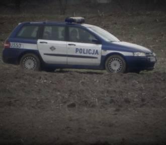 PILNE! Zwłoki kobiety na polu w gminie Lwówek