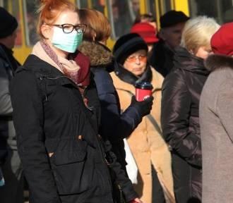 """Program """"Klimat dla zdrowia"""" w Szczecinie. O co chodzi?"""