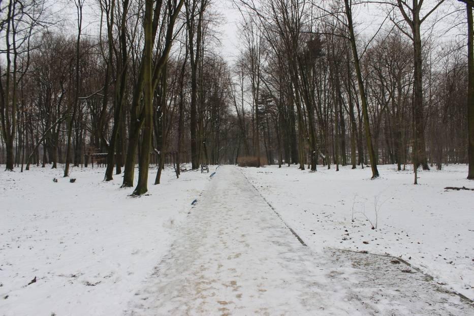 Zimową porą warto odwiedzić Miechowice, dzielnicę Bytomia
