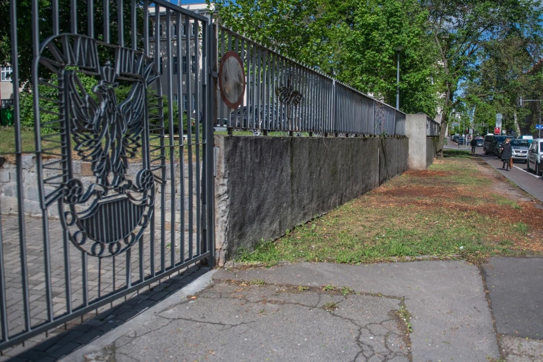 Wzdłuż ulicy Libelta i Kościuszki wycięto 25 drzew