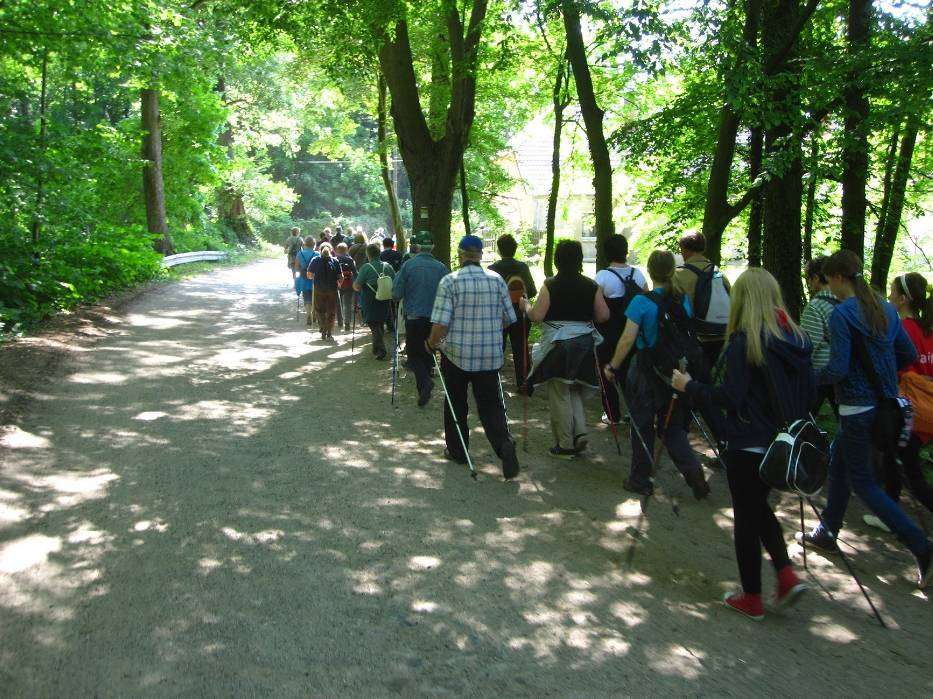 I Pielgrzymka Nordic Walking w Strefie Sacrum