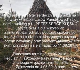 Gmina Czersk. Przez serce klęski - rajd nordic w Nadleśnictwie Rytel. Trwają zapisy... do drugiej