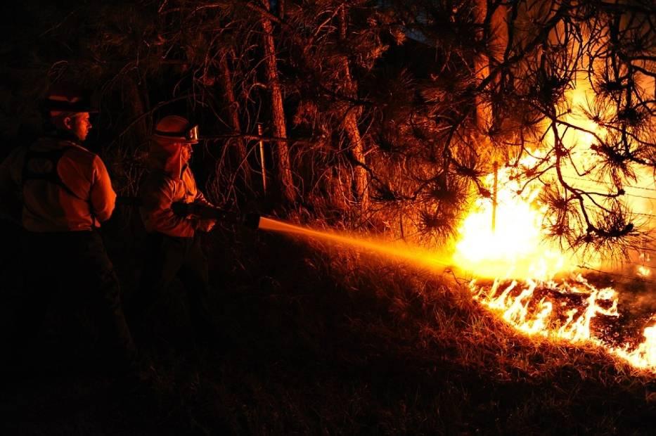 Kampinos - pożar. Płonie 15 hektarów lasu obok Nowego Dworu Mazowieckiego