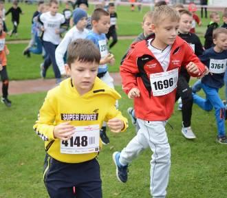 Dzieci, młodzież i całe rodziny wystartowały w biegach Malinowskiego w Grudziądzu [zdjęcia]