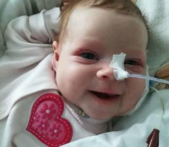 Szukają dawcy szpiku dla Marysi. Dwumiesięczna dziewczynka walczy z białaczką