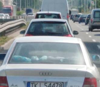 Wypadek na Krakowskiej w Kielcach. Wielki korek