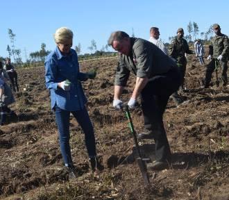 Prezydent RP Andrzej Duda i Pierwsza Dama sadzili las [ZDJĘCIA, WIDEO]