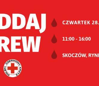 Zostań Honorowym Dawcą Krwi w Skoczowie! W czwartek zbiórka