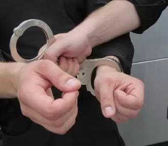 Aż 10 lat więzienia grozi pleszewiance, która kradła w Krotoszynie