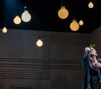 Sen o władzy, pożądaniu i kobietach. Aktor Sławomir Grzymkowski opowiada o najnowszej premierze