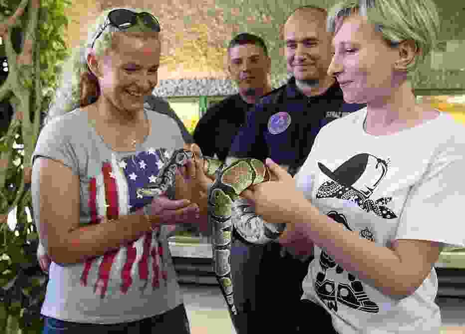 Członkowie Animal Patrolu zostali przeszkoleni w poskramianiu węży