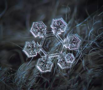 Płatki śniegu pod mikroskopem. Jak najpiękniejsze klejnoty. Niesamowite zdjęcia!