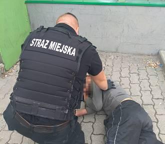 Bełchatów: Strażnicy miejscy i ich interwencje. Jakie są najczęstsze?