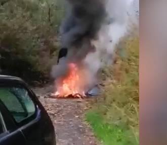 Wpadli dwaj mężczyźni, którzy na obrzeżach miasta wypalali przewody [WIDEO]