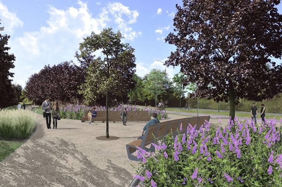 Miasto chce więc wyznaczyć na skwerze alejki i postawić przy nich ławki, kosze na śmieci i stojaki na rowery