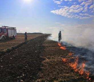 Dym pożaru w okolicach Brudzewa (gmina Puck) widać było z daleka