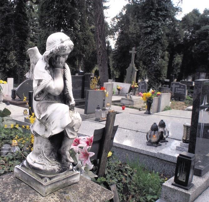 Chłopczyk będzie pochowany na cmentarzu komunalnym