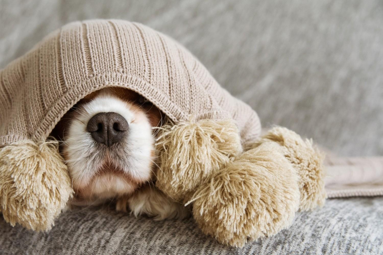 Po trzecie: ciepłe ubrania Jesienią koniecznie trzeba zadbać o odpowiednią termikę