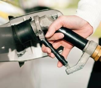 LPG drożeje. Auto na gaz przestanie się opłacać?
