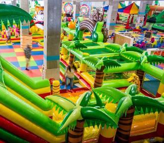 TOP 7 sal zabaw we Wrocławiu, które uwielbiają dzieci [RANKING, ADRESY]