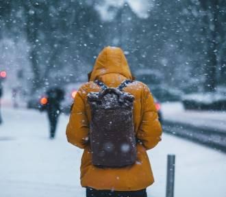 Obowiązki pracodawcy zimą. O czym szef powinien pamiętać?