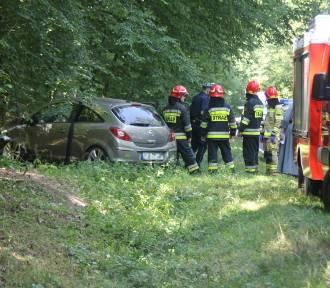 Samochód uderzył w drzewo przy trasie Sulmierzyce-Krotoszyn [ZDJĘCIA]