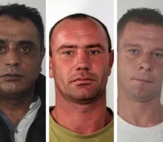 Pijani kierowcy poszukiwani przez policję. Zobacz zdjęcia!