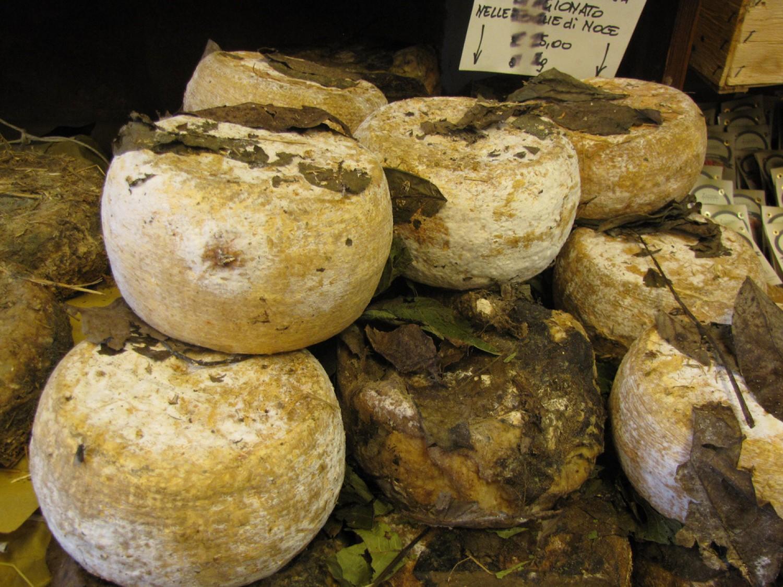 CASU MARZURodzaj sera owczego wytwarzanego w Sardynii, w smaku przypomina gorgonzolę